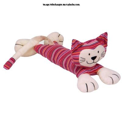 Stripey chat rose
