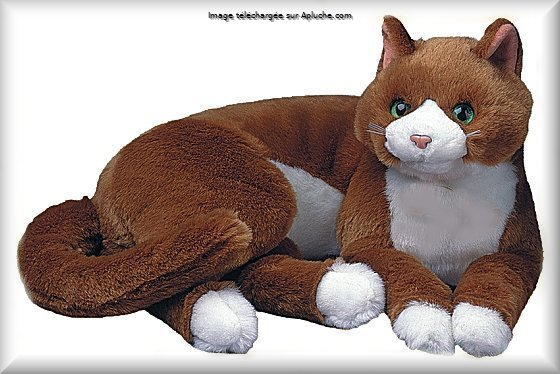 Peluche de chat marron