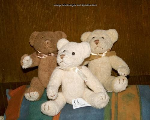 La famille Ted
